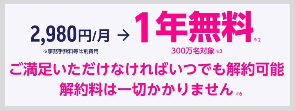 月額料金2,980円が1年間0円になる条件について