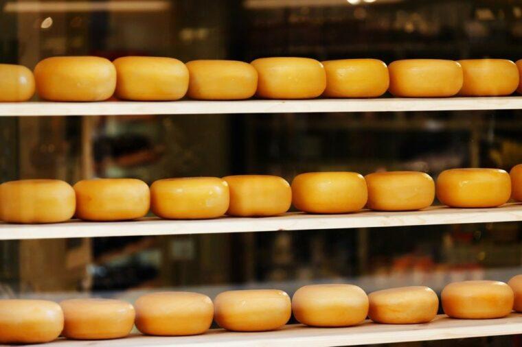 【要約】「チーズはどこへ消えた?」のストーリー